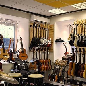 Музыкальные магазины Светлогорска