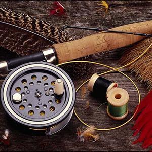 Охотничьи и рыболовные магазины Светлогорска