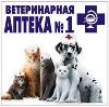 Ветеринарные аптеки в Светлогорске