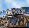 Зоопарки в Светлогорске